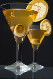 Two bocals  of martini Stock Images
