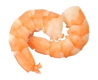 Two boiled shrimp Royalty Free Stock Images