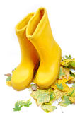 Two boots on leaves Stock Images