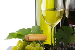 Two bottle of red and white wine Stock Images