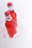 Two bottles Royalty Free Stock Photos