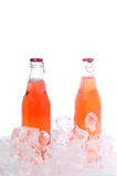 Two bottles Royalty Free Stock Photo
