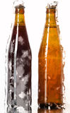 Two bottles of beer on a reflective surface Royalty Free Stock Images