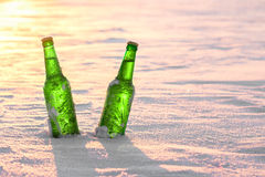 Two bottles of cold beer on the snow at sunset. Royalty Free Stock Images