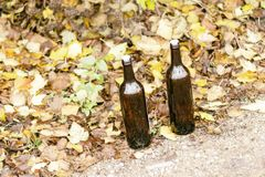 Two bottles empty of wine. closed with cork. stand on the yellow foliage on the street.  stock image