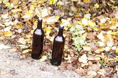 Two bottles empty of wine. closed with cork. stand on the yellow foliage on the street.  stock images