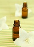 Two bottles of essence oil and flowers. Stock Images