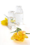 Two bottles with flowers. A photo of two glass bottles with yellow flowers Stock Photos