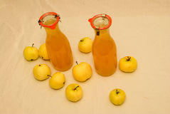 Two bottles of freshly bottled homemade applejuice Stock Image