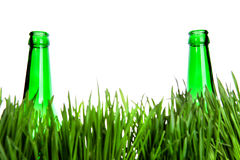 Two Bottles in the Grass Royalty Free Stock Image