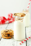 Two bottles of milk Royalty Free Stock Images