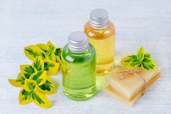 Two bottles of natural hair shampoo and handmade organic hair soap bar with plants Stock Photo