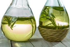 Two bottles of olive oil Stock Image