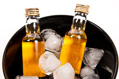Two bottles of rum with ice cube Royalty Free Stock Photo