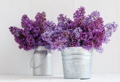 Free Two Bouquet Of Lilac Flowers Stock Photos - 40094893