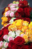 Two bouquets of roses Royalty Free Stock Photo
