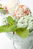 Two Bowls of Ice Cream Stock Images