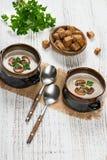 Two bowls of mushroom cream soup Stock Photos