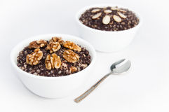 Two Bowls Of Traditional Kutia Dessert Royalty Free Stock Photo