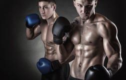 Two boxer Stock Photos