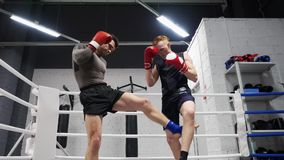 Two boxer man training kick by legs on boxing ring. Low angle view. Boxer man training together personal trainer in gym. Club. Boxing training. MMA concept. MMA stock video footage