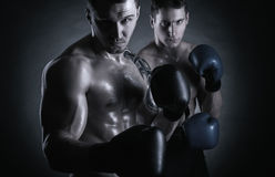 Two boxer. Two young boxer with boxing gloves before a fight on a black background stock photo