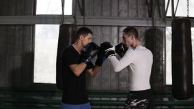 Two boxers in boxing gloves facing each other before sparring. Standing against grey background. Wearing casual
