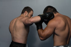 Two Boxers Facing Each Other In A Match Royalty Free Stock Photo