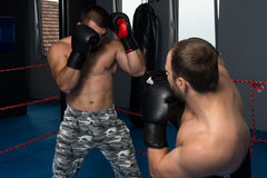 Two Boxers Facing Each Other In A Match Stock Photography