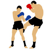 Two boxers fighting with low kick Stock Image