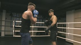 Two boxers finish training. On ring stock footage