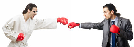 The two boxers isolated on the white Royalty Free Stock Photos