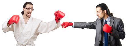 The two boxers isolated on the white Stock Photography