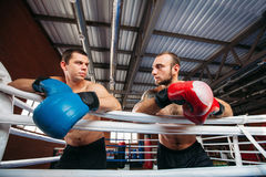 Two boxers look at each other after training. Stock Images