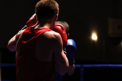Two boxers in ring during a Boxing competition. View from back red gloves. darker background Royalty Free Stock Photo