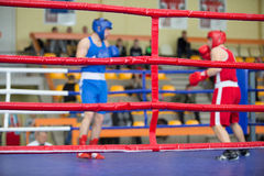 Two boxers on the ring. Fight of two boxers on the ring Royalty Free Stock Photo