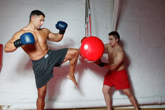 Two boxers on training. Two young sportsmen box a pear in boxing gloves Royalty Free Stock Image