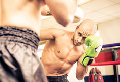 Two boxers training Stock Photos