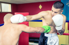 Two boxers training and making sparring stock images