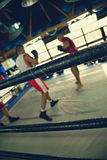 Two Boxers At Training Royalty Free Stock Images