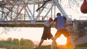Two boxers are training outdoors, sunset, park stock footage