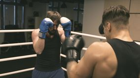 Two boxers training punches and defense. On ring stock video footage