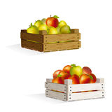 Two boxes of apples Royalty Free Stock Photos