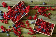Red currant and blueberries. Two boxes of berries on an old shabby table. View from above Royalty Free Stock Images