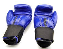Two boxing gloves Stock Image