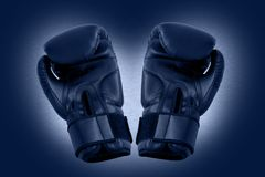 Two boxing gloves. Isolated with own path Royalty Free Stock Photography