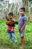 Two boys with a chicken Royalty Free Stock Photo