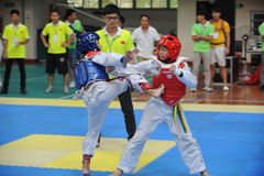 Two boys contest  in a Taekwondo competiton Stock Photography