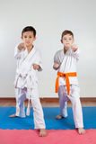 Two boys demonstrate martial arts working together. Fighting position, active lifestyle, practicing fighting techniques stock photos