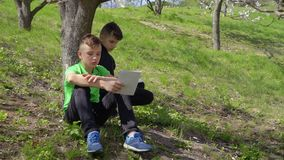 Two boys discusses school homework sitting under the tree in park. Teenagers holds workbooks in hands and boy in green t-shirt ask something in his brother stock footage